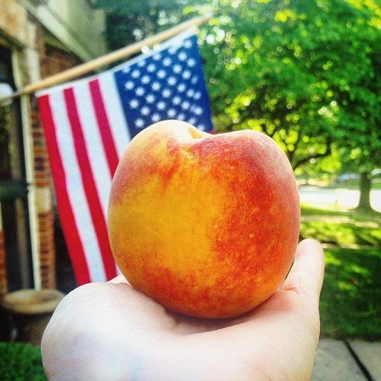Summer Peach Salsa - Eat And Drink With Anna