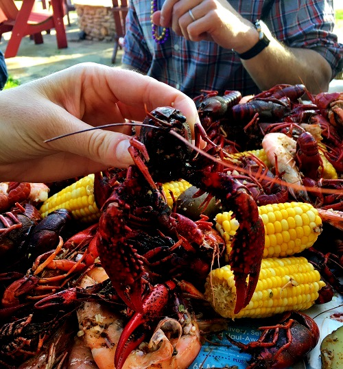 Up Close  with the Crawfish